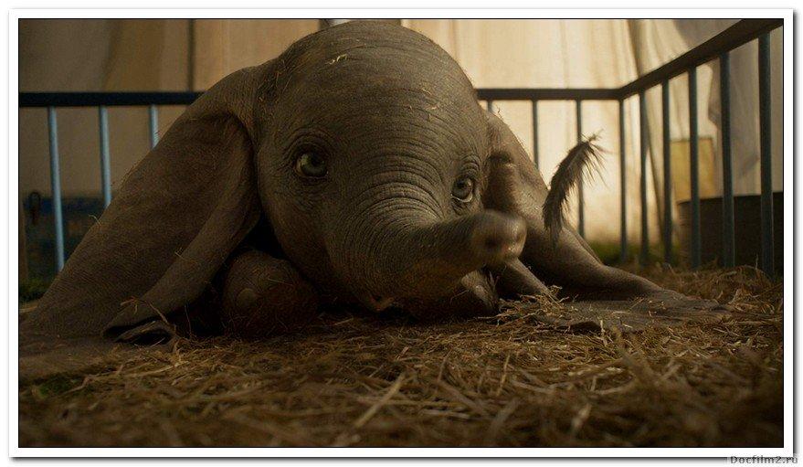 Молодой слон, чьи огромные уши позволяют ему летать, помогает спасти борющийся цирк, но когда цирк планирует новое предприятие, Дамбо и его друзья раскрывают темные секреты под своей блестящей фанерой.