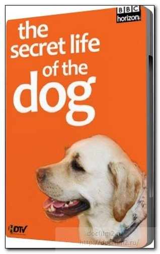 Тайная жизнь собак BBC The Secret Life of the Dog (2010) DVDRip